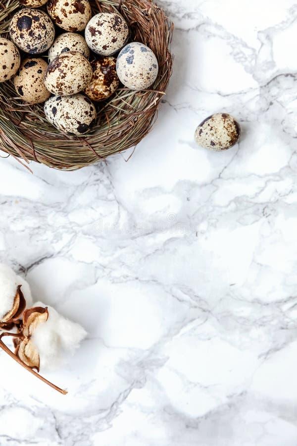 Wielkanocna dekoracja z jajkiem w gniazdeczku i bawełna na bielu wykładamy marmurem tło zdjęcia royalty free
