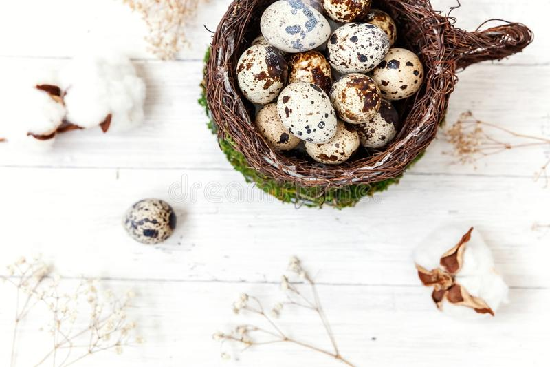 Wielkanocna dekoracja z jajkiem w gniazdowej filiżance i bawełna na bielu wykładamy marmurem tło fotografia royalty free