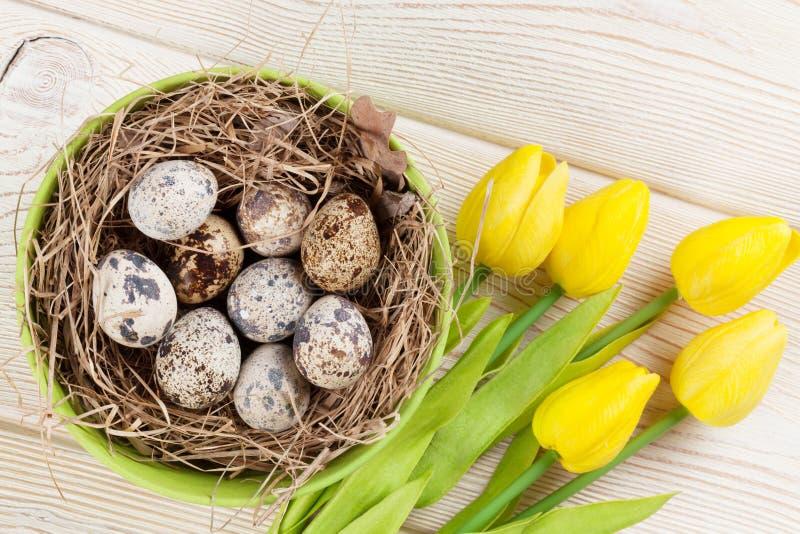 Wielkanocna karta z jajkami i kolorów żółtych tulipanami zdjęcia stock