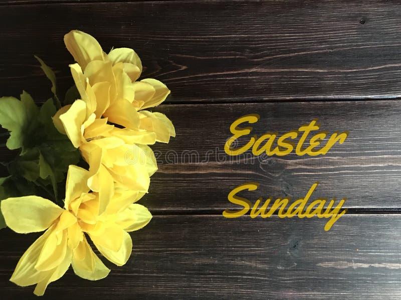 Wielkanocna Niedziela z Żółtymi Daffodils fotografia stock