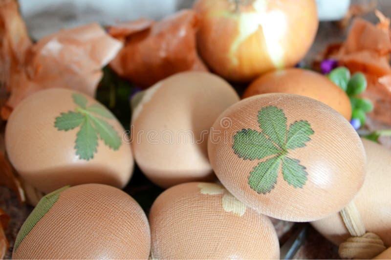 Wielkanocni jajka barwi z cebulą fotografia royalty free