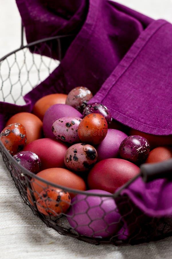 Wielkanocni jajka barwili w purpurowym i brown w koszu zdjęcia royalty free