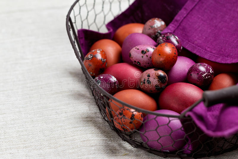 Wielkanocni jajka barwili w purpurowym i brown w koszu zdjęcie stock