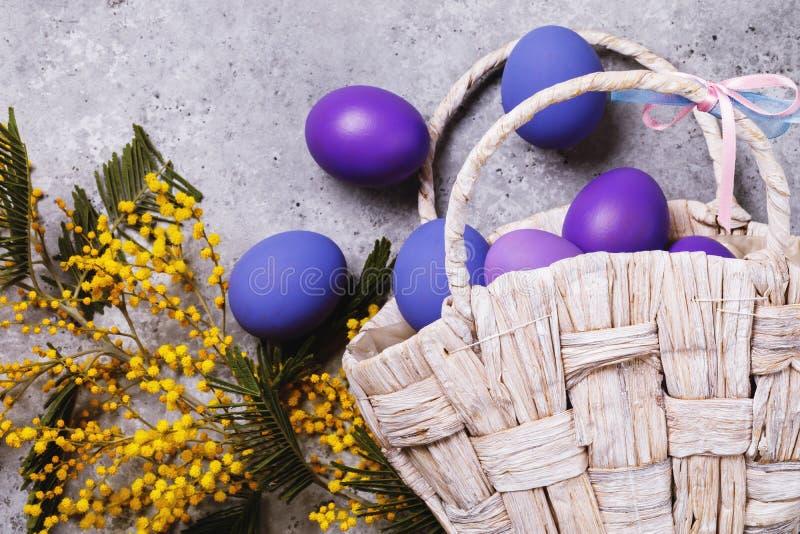 Wielkanocni jajka dekorowali w różnych kolorach z gałąź mimoza na stole obraz stock
