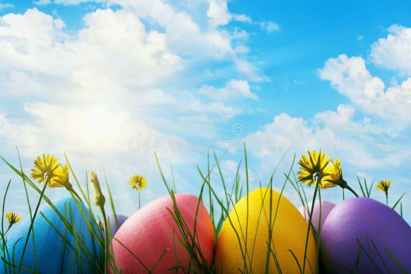 Wielkanocni jajka dekorowali z różnorodnymi kwiatami w trawie przeciw niebieskiemu niebu z chmurami obrazy stock