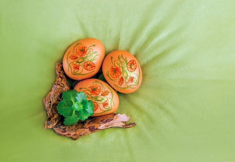 Wielkanocni jajka dekorujący z makowymi kwiatami, roślina na aksamicie i gałąź i, oliwka, zielony brezentowy tło, odgórny widok zdjęcia royalty free