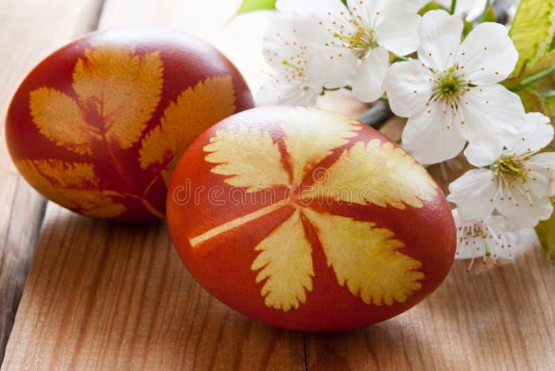 Wielkanocni jajka farbujący z cebulkowymi łupami z wzorem ziele i p, zdjęcie royalty free