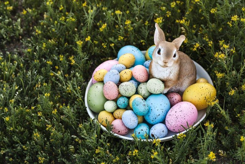 Wielkanocni jajka i królik plenerowi z zieloną trawą jako przestrzeń na lewicie tła i kopii fotografia stock