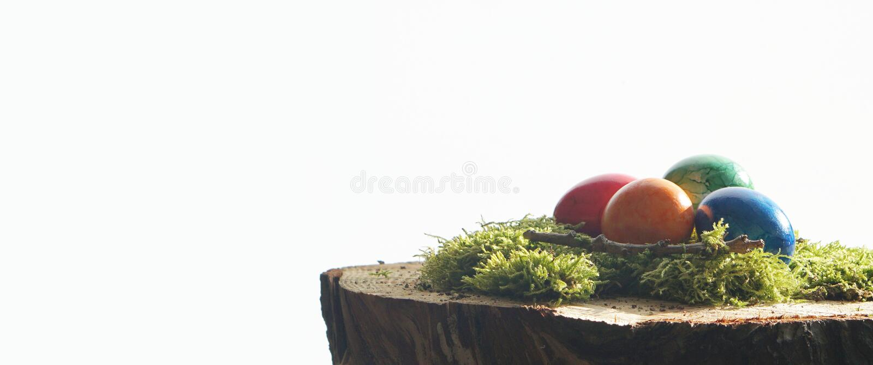 Wielkanocni jajka i zieleni muczenia przy drewnianym blokiem obrazy stock