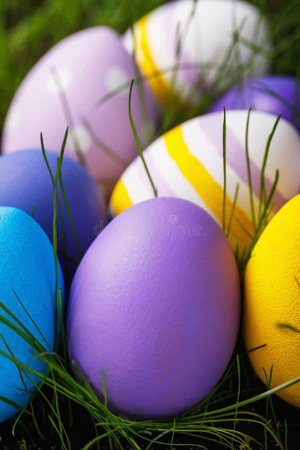 Wielkanocni jajka upiększający w różnorodnych kolorach w trawie fotografia stock