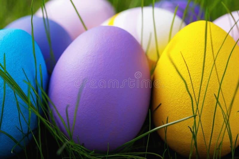 Wielkanocni jajka upiększający w różnorodnych kolorach w trawie zdjęcie stock