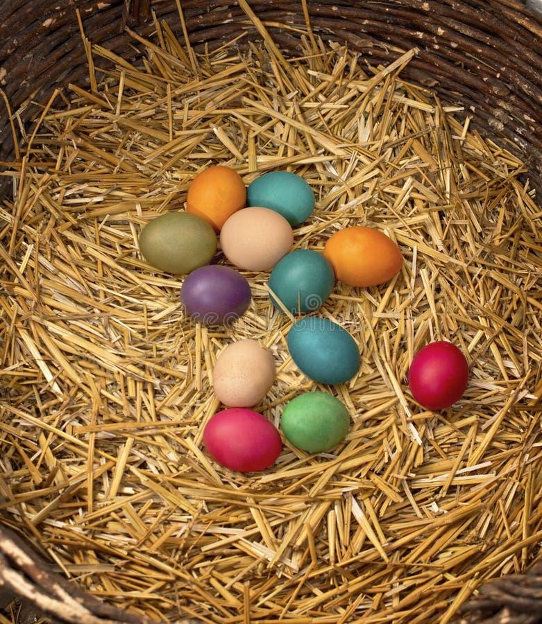 Wielkanocni jajka w gniazdeczku obraz stock