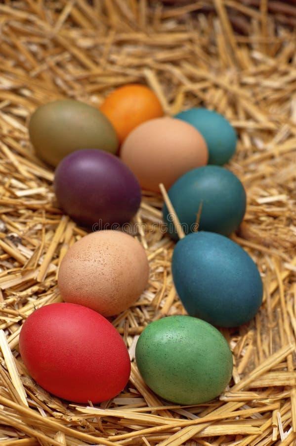 Wielkanocni jajka w gniazdeczku zdjęcia royalty free