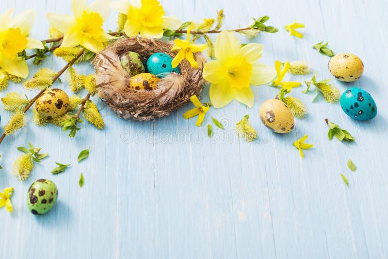 Wielkanocni jajka w gniazdeczku z wiosną kwitną na drewnianym tle zdjęcie royalty free