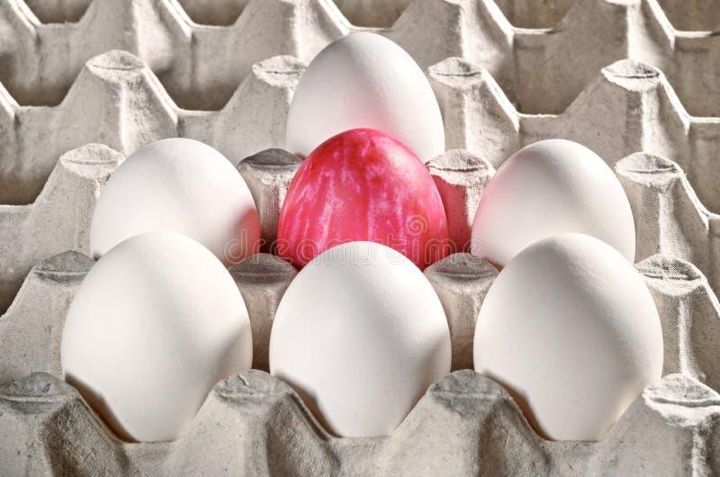 Wielkanocni jajka w kasecie zdjęcie stock
