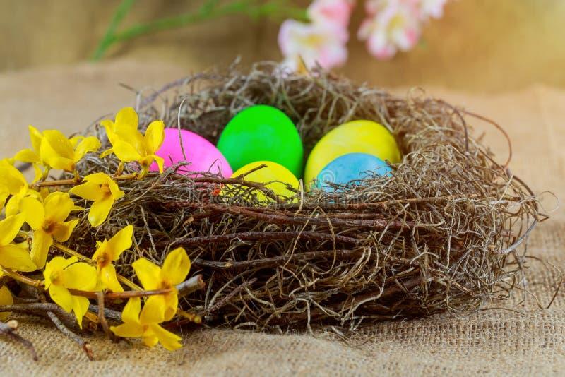 Wielkanocni jajka w koszu z kolorowym dekorującym w tęczy kolory obrazy royalty free