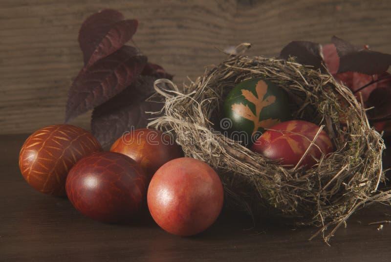 Wielkanocni jajka w ptaka gniazdeczku obraz royalty free