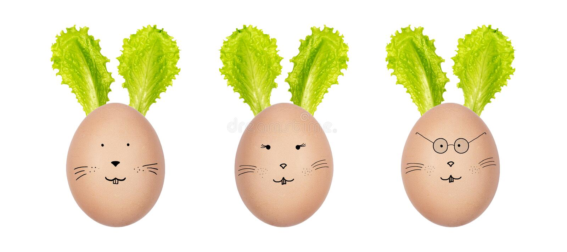 Wielkanocni króliki robić hen's jajka i zielonej sałatki liście Śmieszne królik twarze rysować na jajkach Kreatywnie Wielkanocn obraz stock