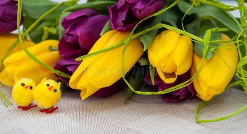 Wielkanocni tulipany fotografia stock