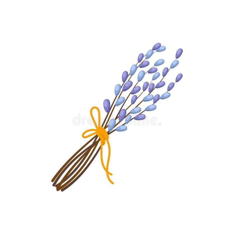 Wielkanocny bukiet kici wierzby gałąź ilustracja wektor
