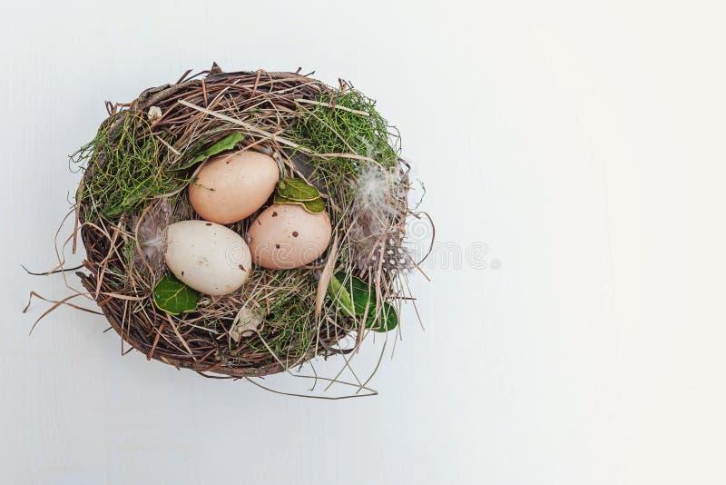 Wielkanocny jajko w gniazdeczku na nieociosanych drewnianych deskach obrazy royalty free