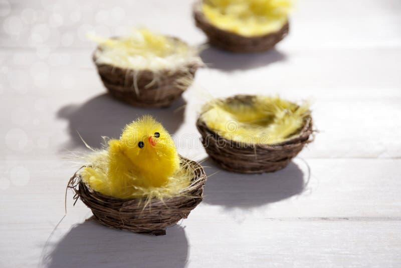 Wielkanocny kosza gniazdeczko Z Żółtym kurczątkiem I Bokeh fotografia royalty free