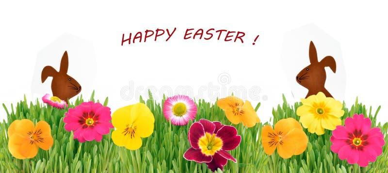 Wielkanocny królik w zielonej trawie z kwiatami obraz stock