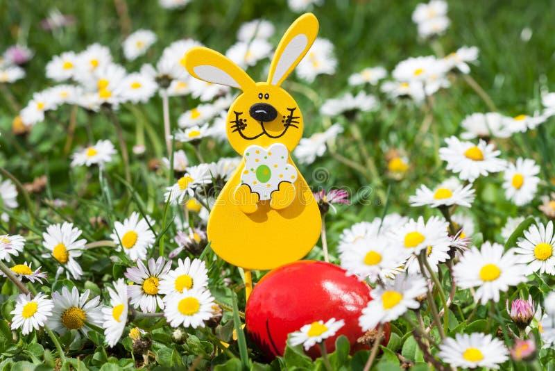 Wielkanocny królik z Wielkanocnym jajkiem na kwiatu polu zdjęcie stock