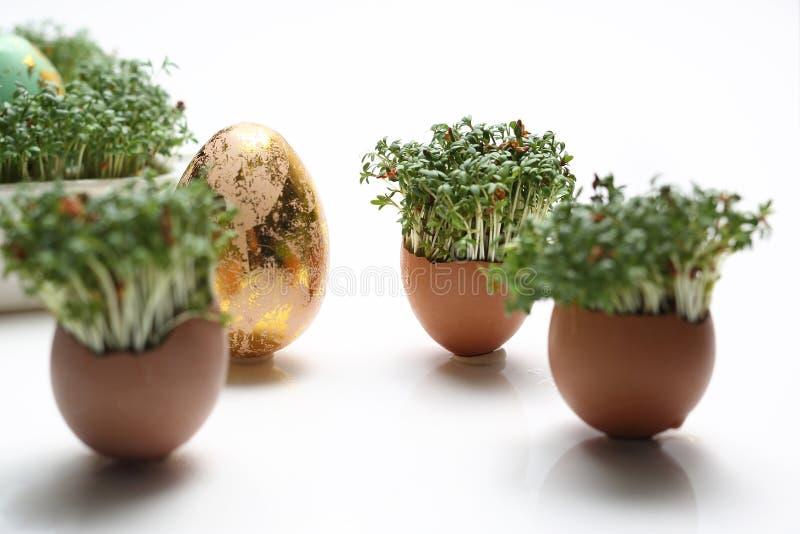 Wielkanocny skład z jajkami i skorupami złotymi i błękitnymi fotografia stock