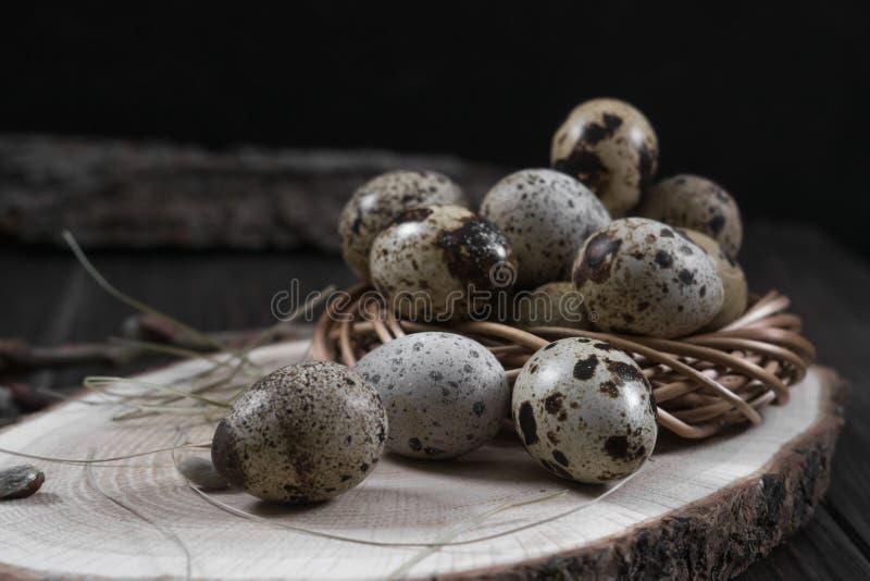 Wielkanocny skład z przepiórek jajkami i gałązkami wierzbowy okwitnięcie zdjęcie stock