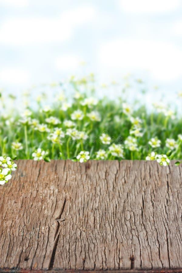 Wielkanocny tło. zdjęcia stock