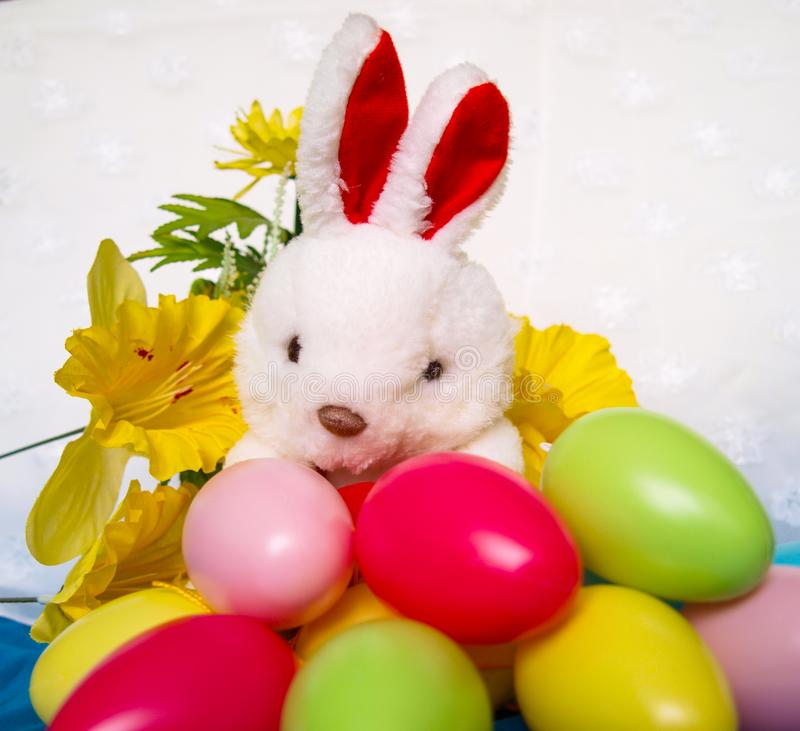 Wielkanocny tło z pluszowym królikiem, jajkami i kwiatem, zdjęcie royalty free