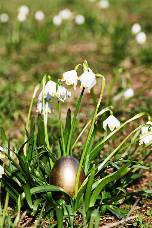 Wielkanocnych jajek płatek śniegu outdoors fotografia royalty free