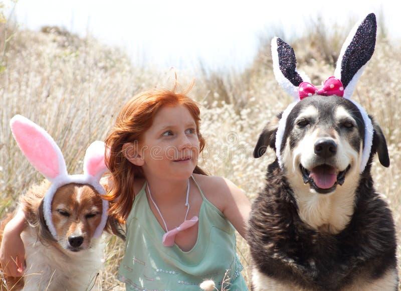Wielkanocnych królików ucho fotografia royalty free