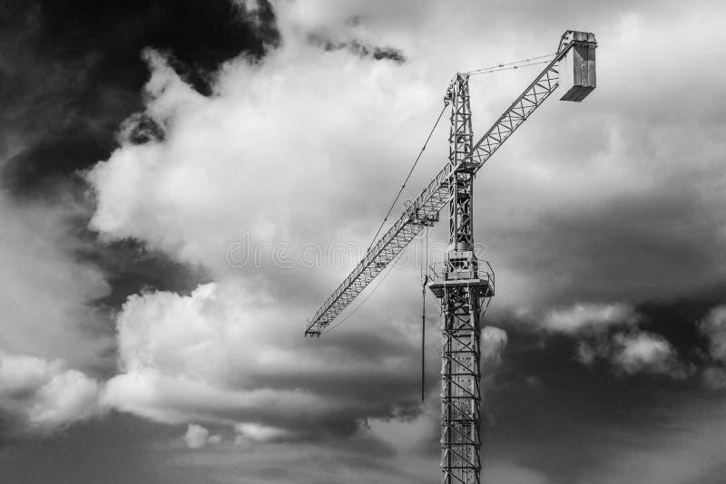 Wielki żuraw W niebie 2 fotografia stock