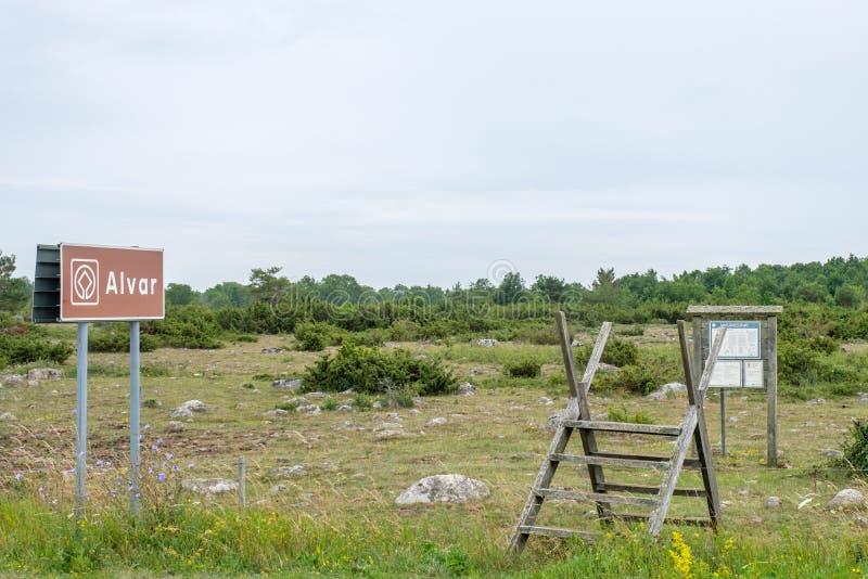 Wielki Alvar na morze bałtyckie wyspie Oland obrazy royalty free
