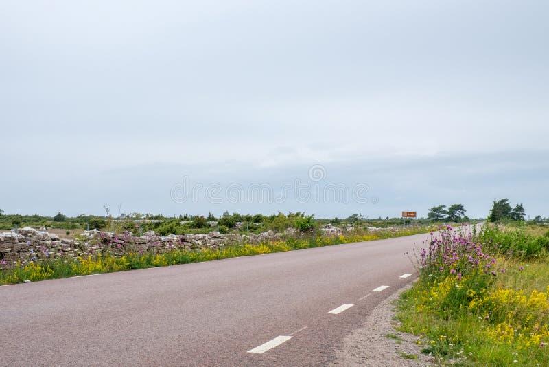 Wielki Alvar na morze bałtyckie wyspie Oland zdjęcie stock