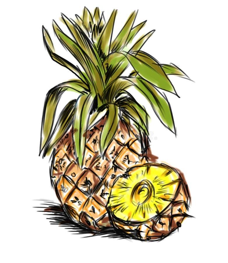 wielki ananas ilustracja wektor