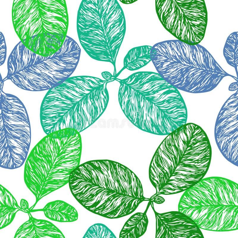 Wielki banan lub fleaworts Plantago ważna roślina royalty ilustracja