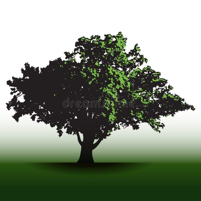 Wielki chwalebnie stary dębowy drzewo ilustracja wektor