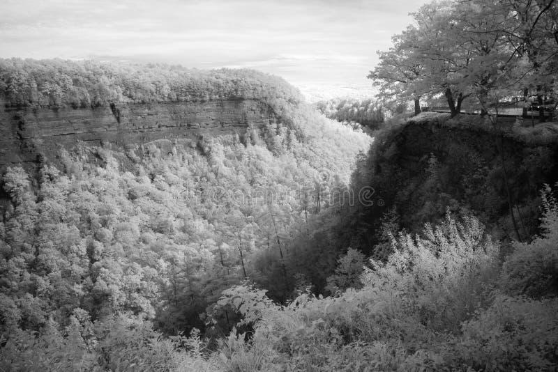 Wielki chył Przegapia Przy Letchworth stanu parkiem W Nowy Jork obrazy royalty free
