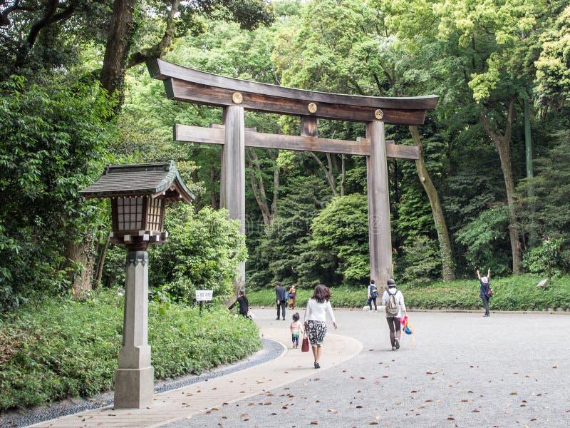 Wielki Drewniany Torii przy Meiji Jingu świątynią, Tokio, Japonia zdjęcia royalty free