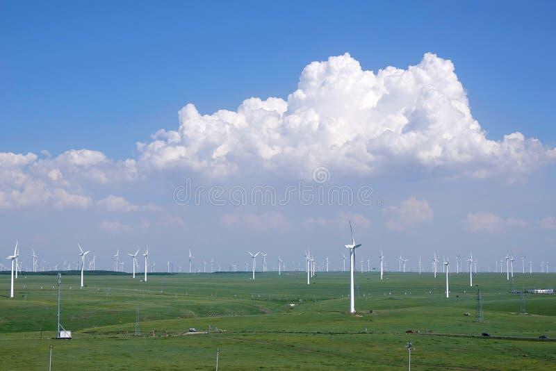 wielki niebieski chmura wschodu brzegowego farmy Północnej nieba pogody biały miły wiatr fotografia royalty free