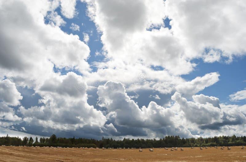 Wielki niebieskie niebo z pięknymi chmurami i haystacks na fi fotografia royalty free
