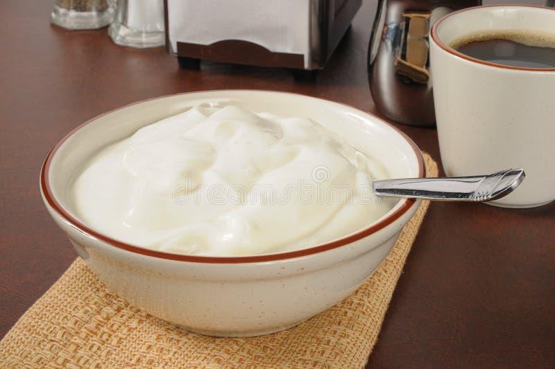 Puchar prosty jogurt fotografia royalty free