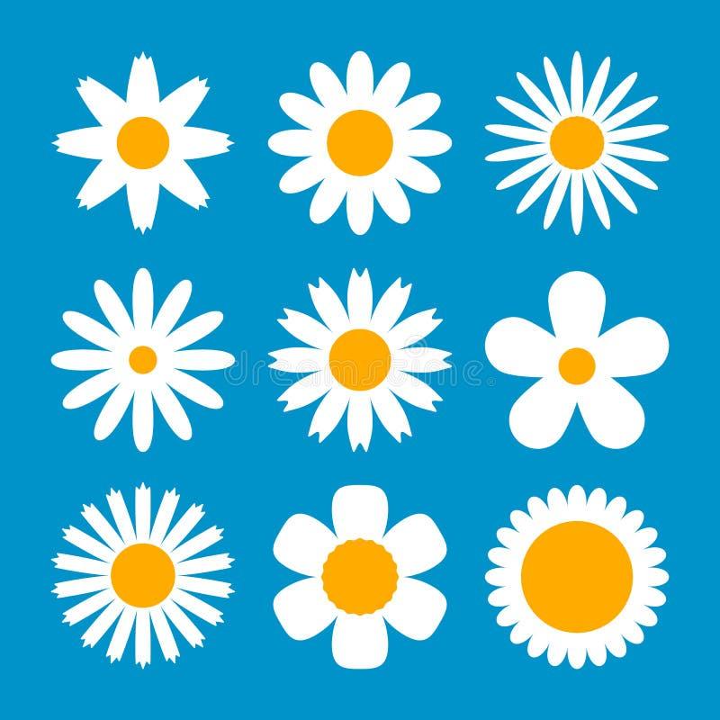 Wielki ustawiający różnorodni biali kwiaty w stokrotka stylu Kwiat kolekcja dla różnego wakacyjnego wystroju Płaska wektorowa ilu ilustracji