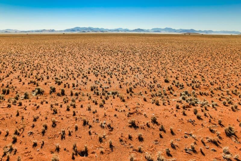 Wielki widok nad trawiastą pustynną równiną i pasmem górskim zdjęcie royalty free