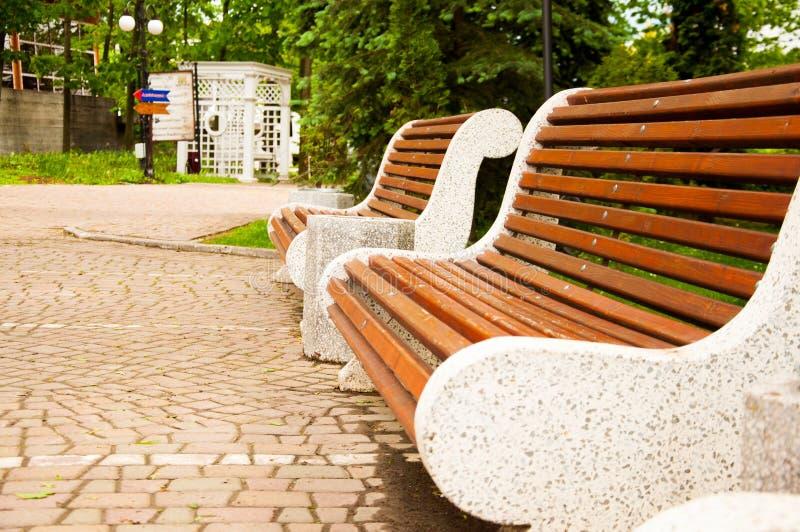 Wielkie betonowe ławki z drewnianymi elementami Blisko alei w parku Lato w jardzie drzewo pola fotografia stock