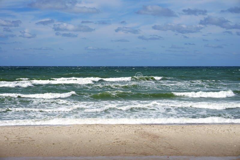 Wielkie fala morze bałtyckie na Curonian mierzei Wyrzucać na brzeg obrazy stock