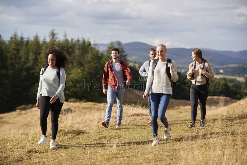 Wielo- grupa etnicza pięć szczęśliwych młodych dorosłych przyjaciół chodzi na wiejskiej ścieżce podczas halnej podwyżki, zakończe zdjęcia royalty free
